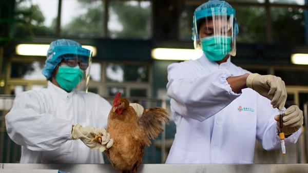 沪报告1例人感染H7N9禽流感确诊病例