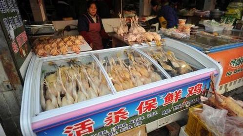 活禽交易暂停 专家:冷鲜鸡口感营养更好