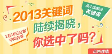 2013关键词陆续揭晓,你选中了吗?