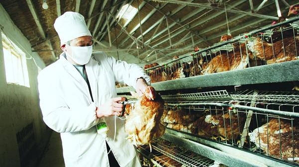 沪新增2例人感染H7N9禽流感确诊病例