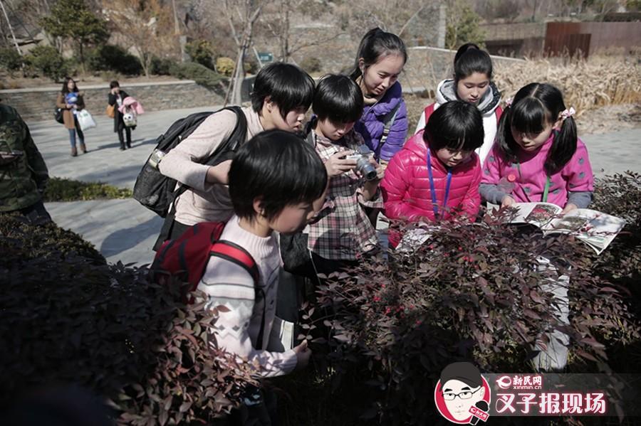 游学识植物