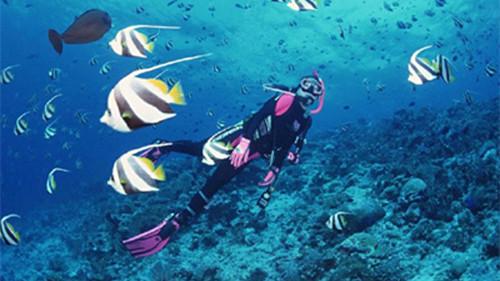中国游客在马尔代夫溺亡 今年已4人