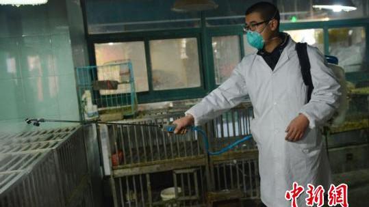 萧山现家庭聚集性H7N9禽流感病例