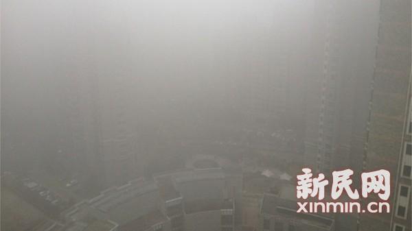 除夕上演雾锁申城 多条高速路封闭