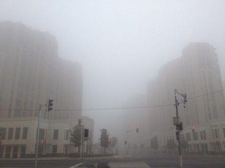 气象台发布大雾黄色预警 白天轻度霾