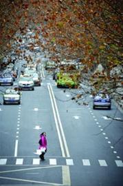 寒潮袭沪 春节长假后期阴雨天气增多