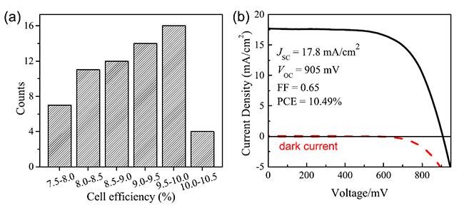 薄膜太阳能电池成为这类新型太阳能电池的重要研究方向之一。目前,报道的无空穴传输材料的钙钛矿薄膜太阳能电池的最高效率达到了8%,还远低于基于空穴材料的钙钛矿型电池。同时,对该类太阳能电池工作机理的认识上还存在敏化机制和异质结机制的争论。   最近,中国科学院物理研究所/北京凝聚态物理国家实验室(筹)清洁能源重点实验室研究员孟庆波研究组在改进薄膜沉积工艺的基础上,通过界面调控和薄膜沉积优化,在无空穴传输材料的钙钛矿型甲胺铅碘薄膜太阳能电池方面研究取得了重要进展,电池效率率先突破10%,电池开路电压超过900