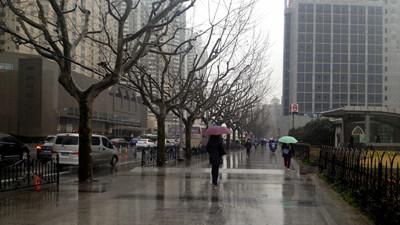 申城雨水今明两天暂歇 周五将卷土重来