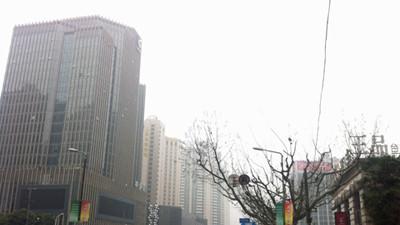 雨水重返雾霾将散 申城开启阴雨模式