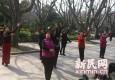 雨水今歇  上海未来7天仍阴雨天气为主