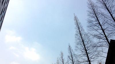 本周申城以晴好天气为主 入春尚需等待