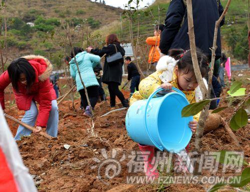 榕各地开展植树造林活动吸引众多志愿家庭参加