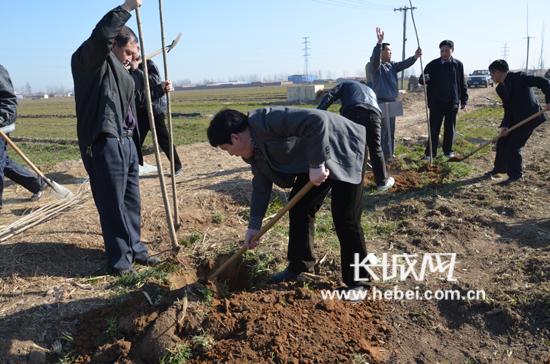 新乐民政局干部义务植树百余棵 种下一片新绿