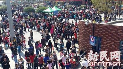 【新生活】11万赏樱客挤爆顾村公园 什么时候去最好?