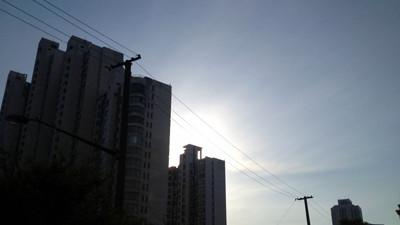 沪未来三天最高温或突破20℃ 天气晴好