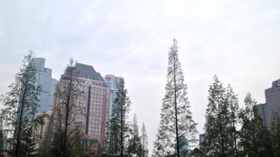 申城今日大雨降温 未来四天降雨频繁