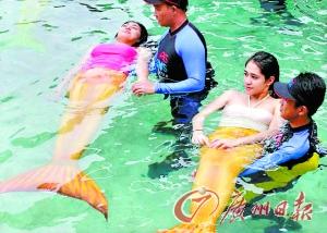 菲律宾开设美人鱼课程[图]