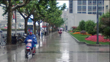 申城下半周气温上上下下 春雨不时来访