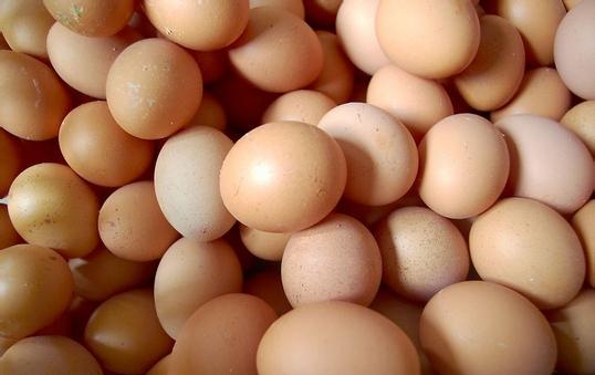 鸡蛋不宜与豆浆同吃?10大误传你知道吗