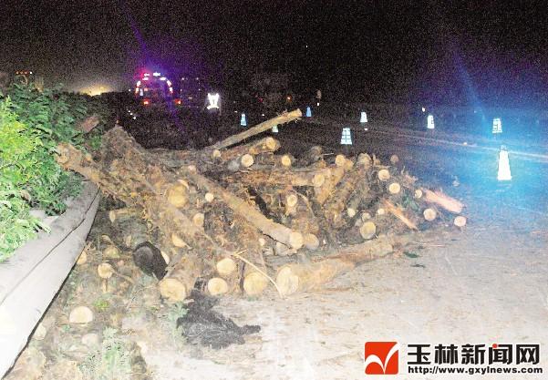高速路上木头飞越隔离带砸过来 多车受损