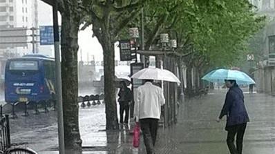 """申城今风雨交加  五一或""""唱晴歌"""""""