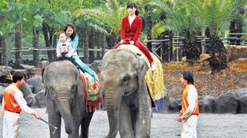 好天气宜出游 申城公园游客昨超112万