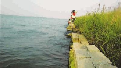 浦东|滴水湖无人岛未开发 游玩存危险