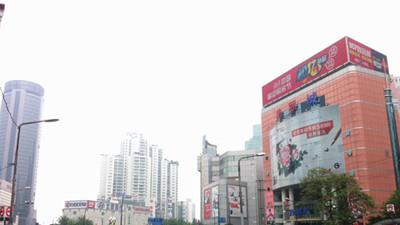 上海本周起悄然入夏:气温最高将达28℃