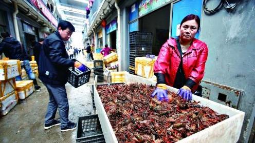 盱眙龙虾协会:每日定点供应上海四五千斤