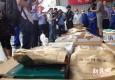 国际禁毒日:上海集中销毁1.3吨缴获毒品