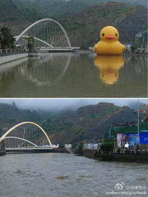 一场暴雨过后大黄鸭失踪了!网友神吐槽笑cry!