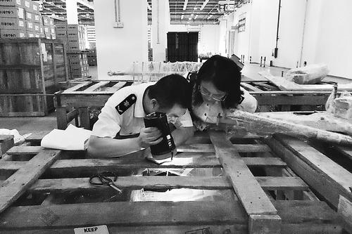 深圳检验检疫局在进境货物木质包装中检出有害生物