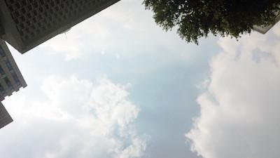 申城今发布高温黄色预警 最高气温将达36℃