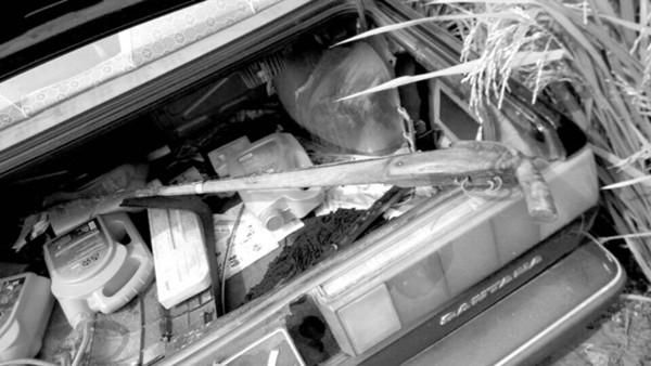安徽受伤男孩霰弹枪来源:系一13岁男孩从邻居家盗取