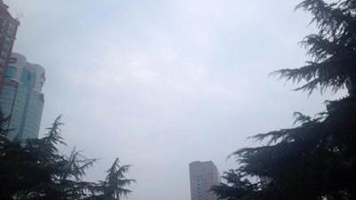 申城雷暴雨突袭电闪约3600次 密度较为惊人