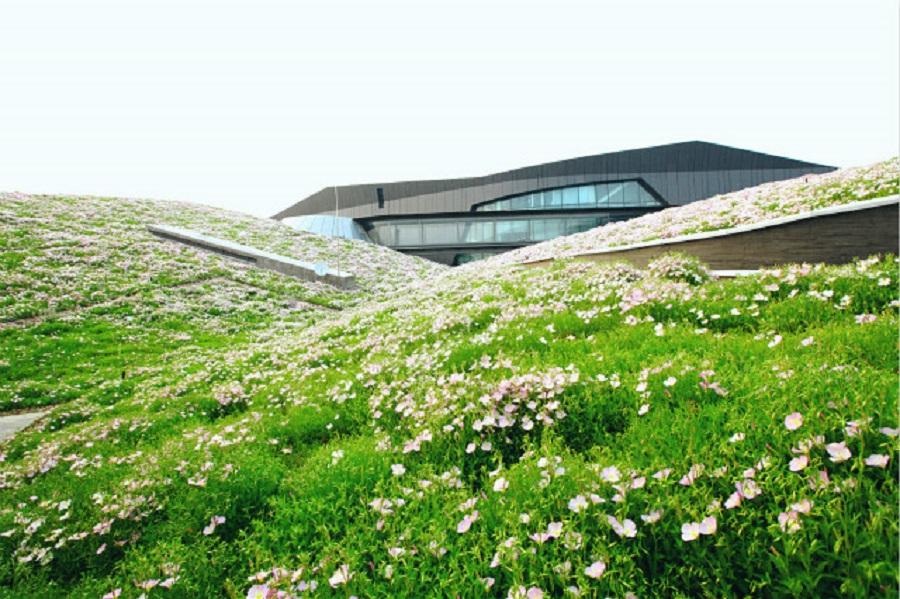 上海最美的屋顶原来在这里!15亿打造屋顶花海