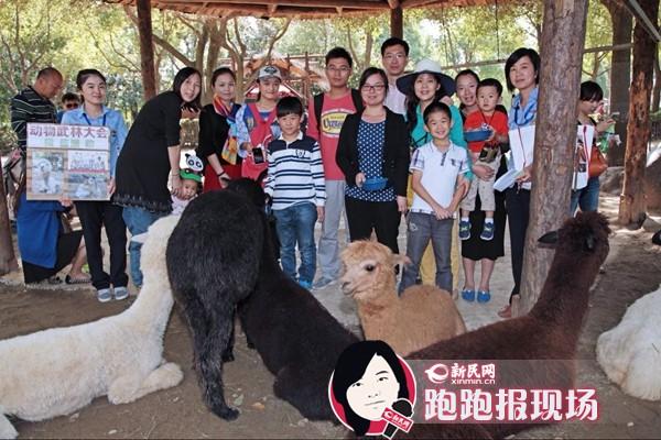 十一黄金周新民网友免费游景点 野生动物园和羊驼互动