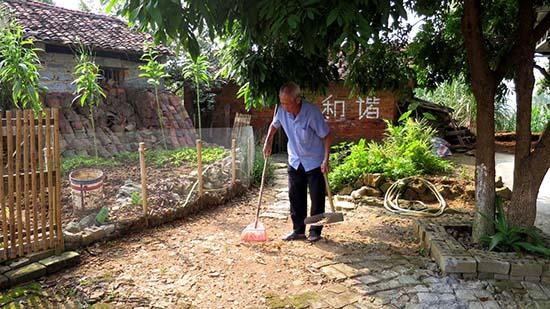 谭如华在打扫村庄卫生死角-上林 美丽老人 扫靓乡村路图片