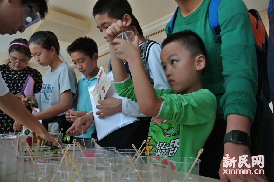 化学嘉年华沪上开幕 中小学生组团走进大学实验室
