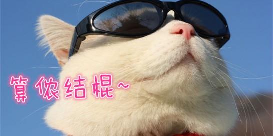 笑喷!上海话就是霸气!