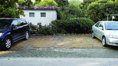 沪一小区绿地悄悄变停车场 居委会:为安全考虑