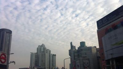 申城今日最低气温仅8℃ 双休日有降水
