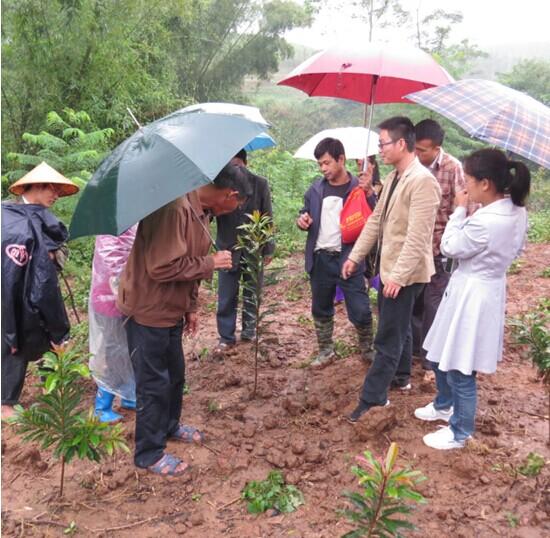 邕宁区扶贫办村举办了园林绿化苗木种植培训班