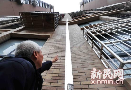 """上海""""楼亲亲""""初步检测结果在规定范围内,你怎么看?"""