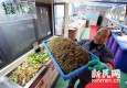 上海试点湿垃圾源头自减 减量达八成