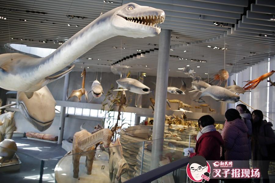 巨大的恐龙标本、广袤的非洲大草原……新建成的上海自然博物馆内正在紧张有序地进行测试、调整工作。今天上午,新民晚报新民网记者探营了这个新博物馆,丰富的内容令人大开眼界。不过市民也别着急,据介绍,展馆将于明年第二季度开始正式对公众开放。新民晚报新民网 萧君玮 摄