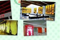 上海十大最美地铁站,有你的那一站吗?
