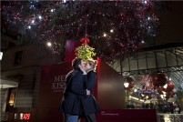 基情四射!接吻就会亮的圣诞树又来新天地啦!