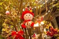 【组图】魔都的圣诞节美爆啦!