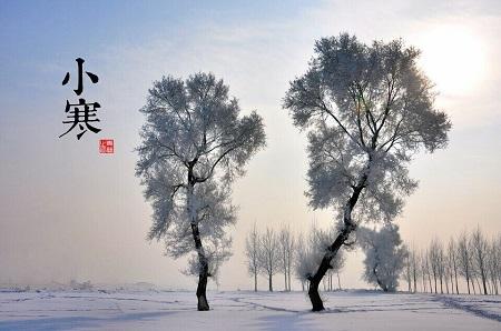 今日小寒 一年中最冷时节来啦(内有美图)!